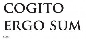 gogitto_ergo_sum (Copier)